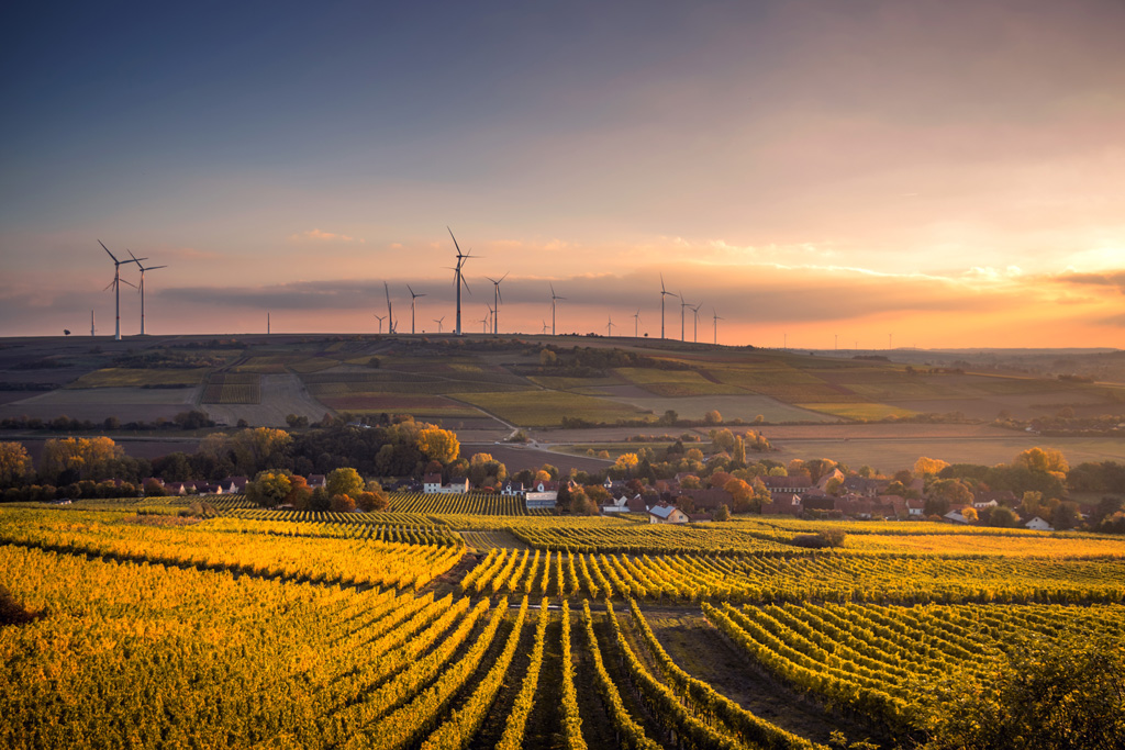 Contrata Seguros de responsabilidad civil medioambiental de Eduardo del Hierro